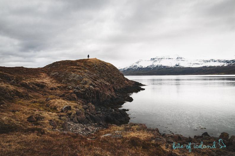 Holmanes peninsula hike