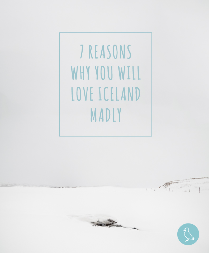 After reading this text, Iceland will become your dream destination!