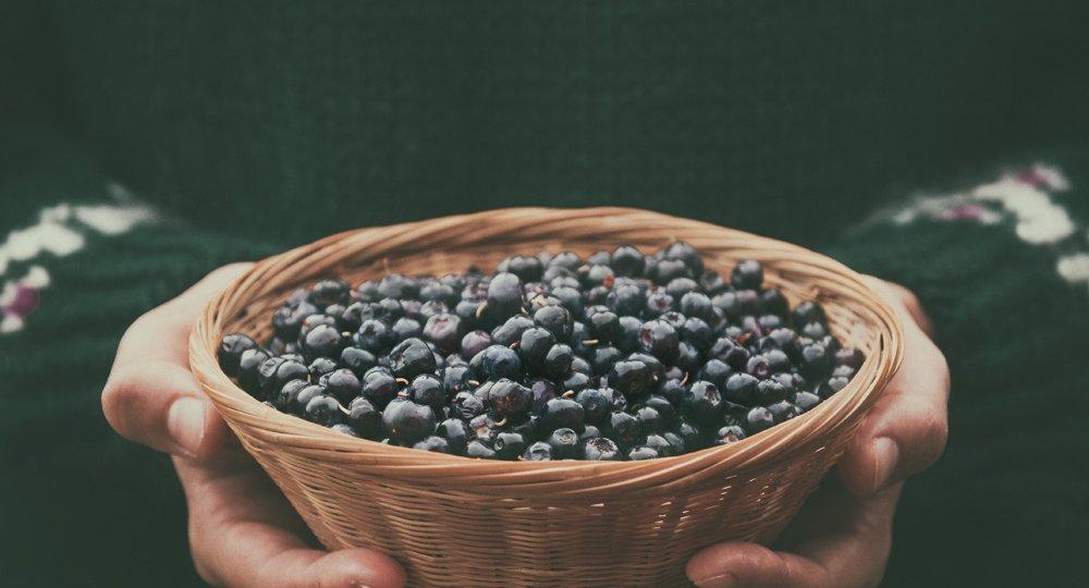 Icelandic blueberries