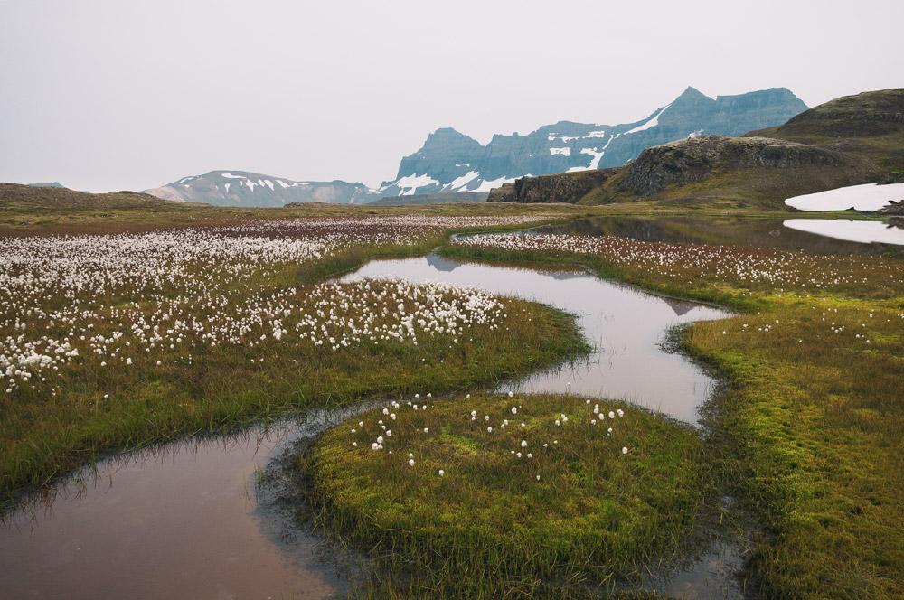 Iceland spell spots