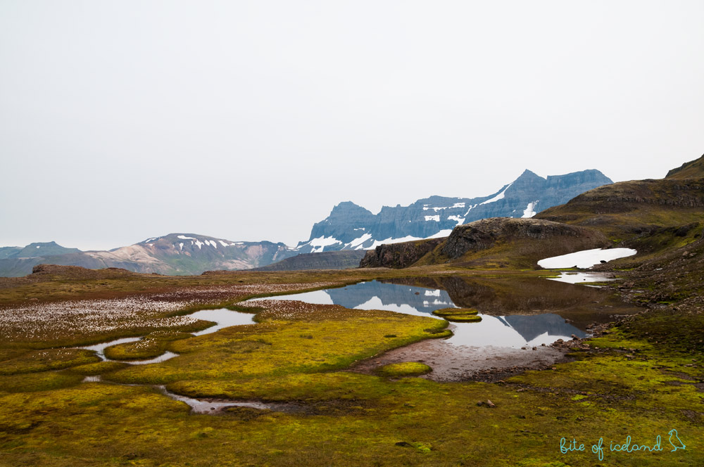 East Fjords Iceland attractions