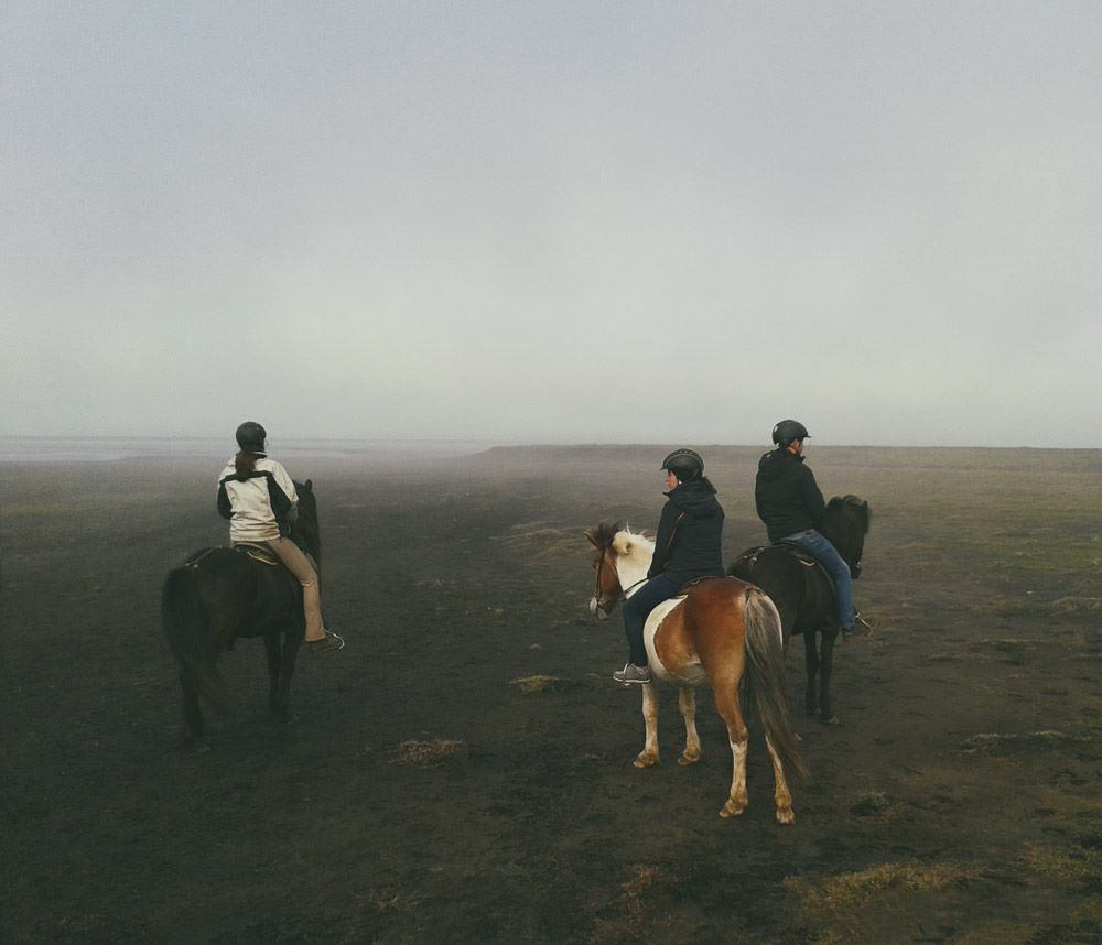 Iceland activities horseback riding Husey
