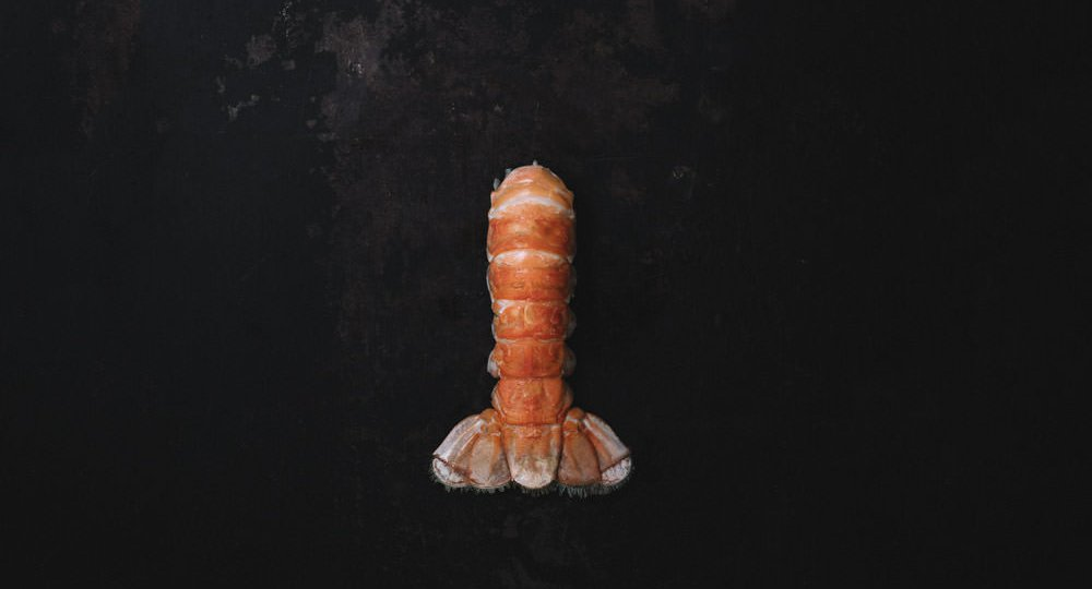 Iceland lobster tail on black background