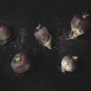 Kitchen wall art- turnip. Kitchen wall decor by Adam Biernat.