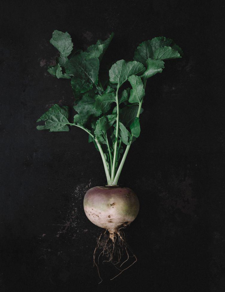 Icelandic Turnip